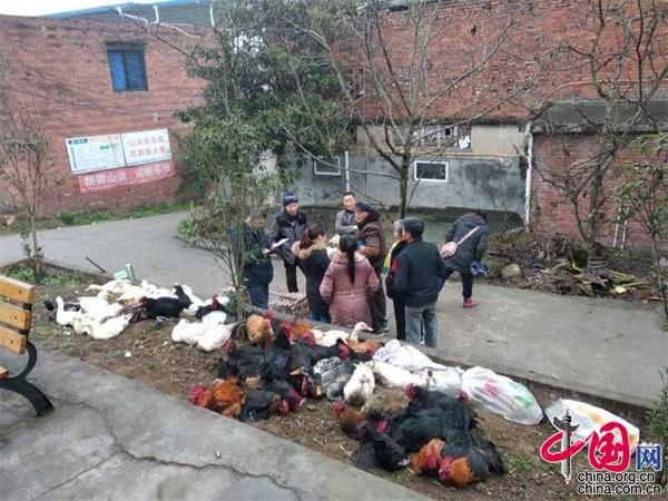 四川荣县社保局定向采购促增收扶贫助困暖人心